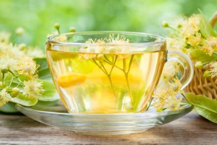 Cup of healthy linden tea, herbal medicine.